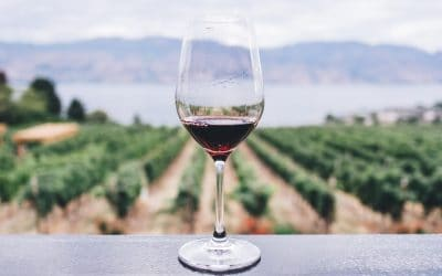 WINE: A DISTANT MEMORY